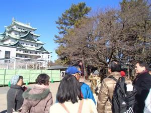 名古屋城天守を見る
